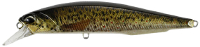Воблер DUO Realis Jerkbait 100SP PIKE 100mm 14.5g CCC3815 Brown Trout ND